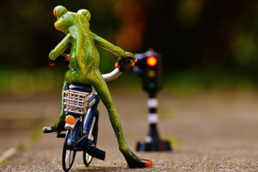 Thema: Grüner Pfeil für Radfahrer